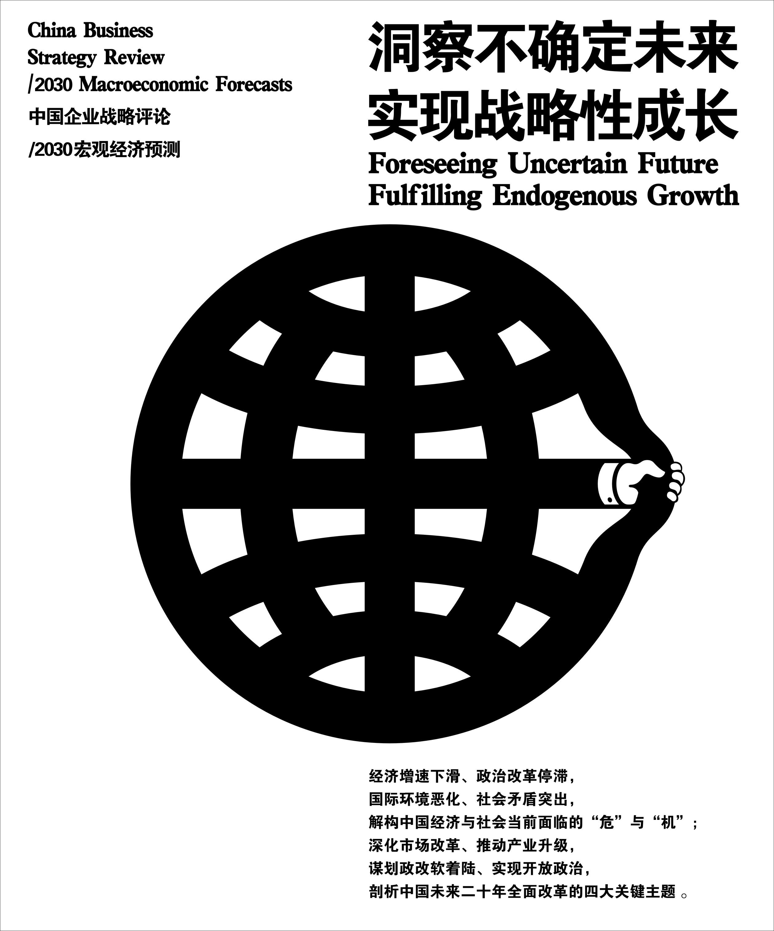 中国企业战略评论/2030宏观经济