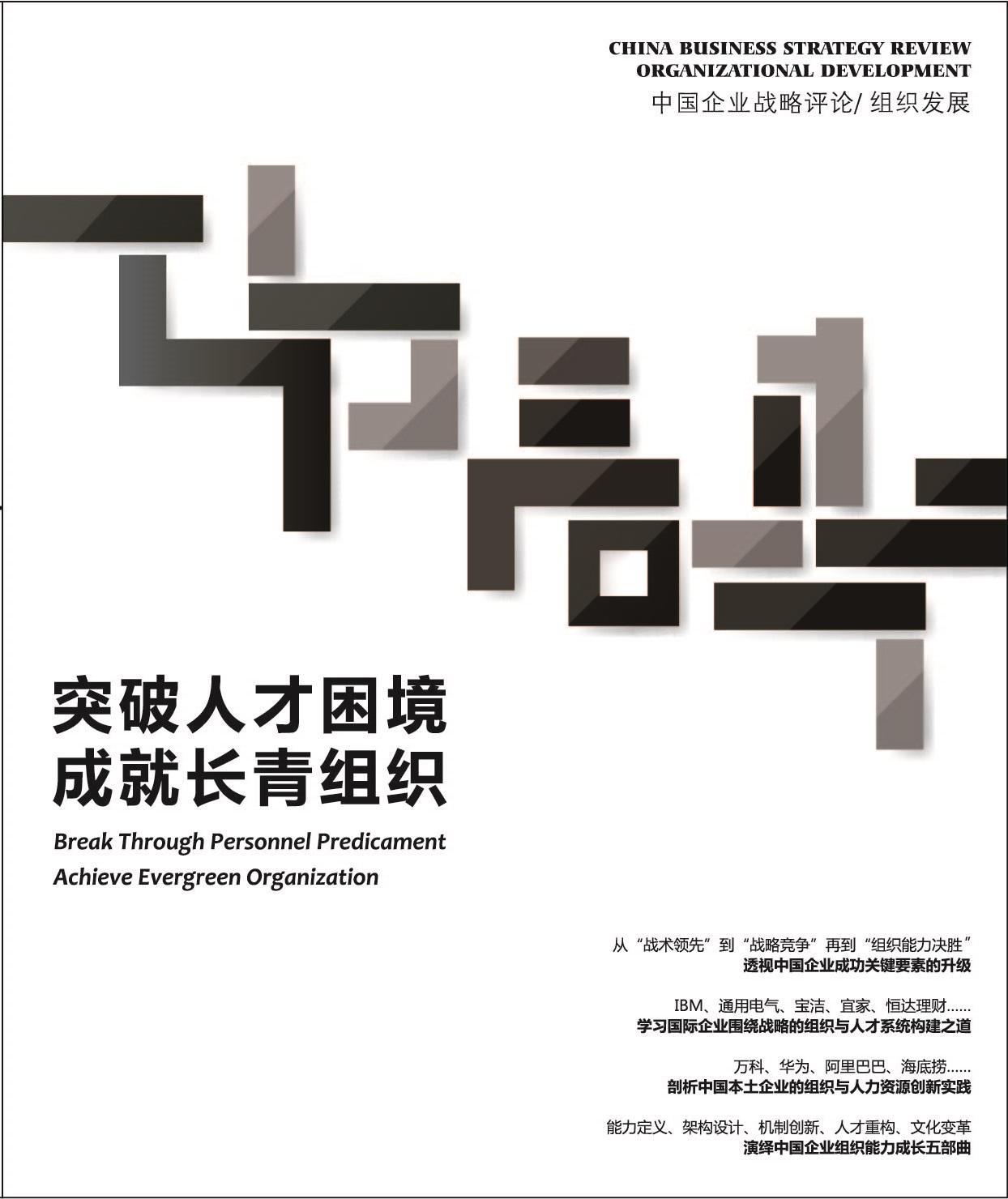中国企业战略评论/组织发展